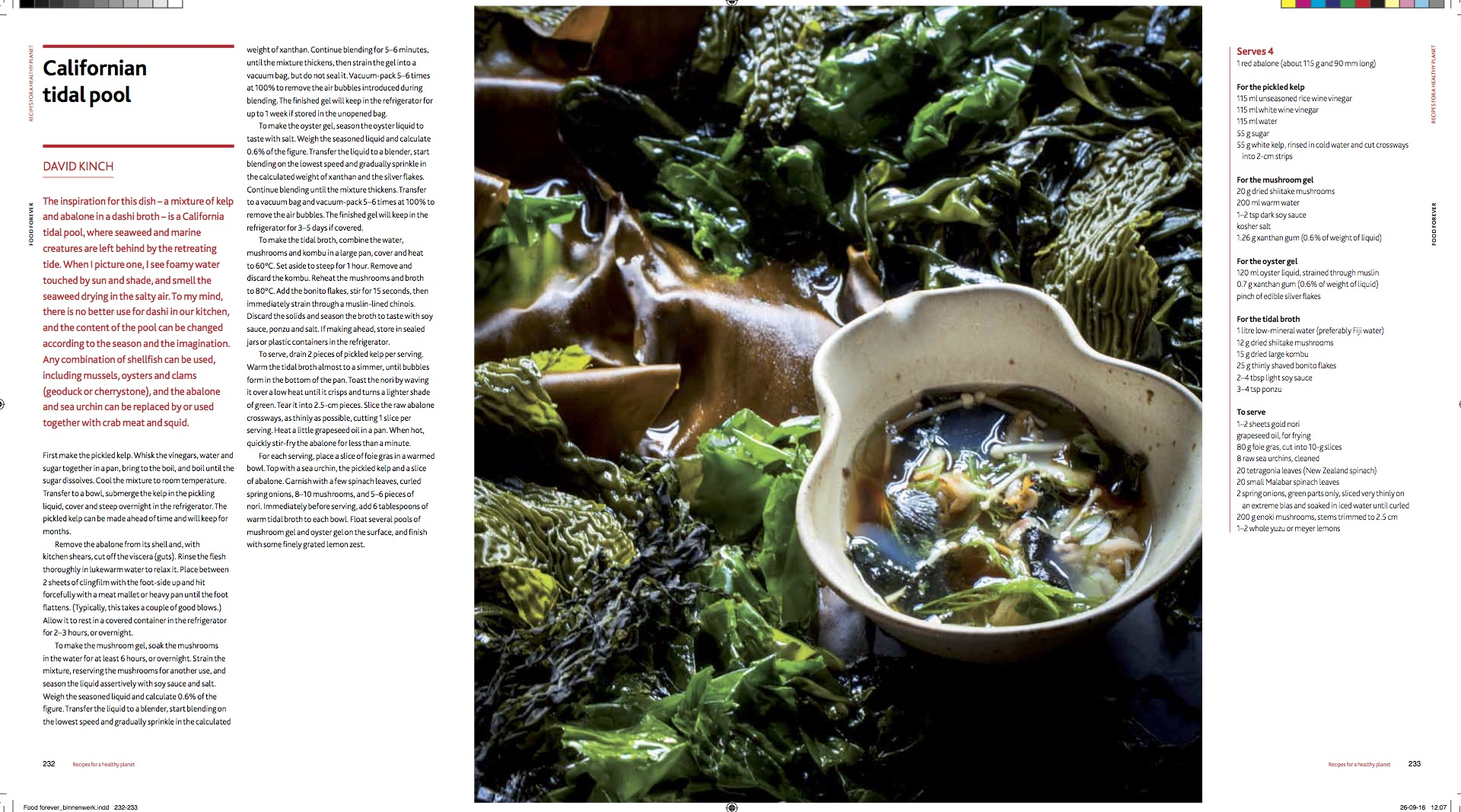 Feedinggood recipes 25 chefs from 6 continents have helped to experiment and develop recipes that reflect on resilient food cultures the pictures above this text are just a forumfinder Choice Image